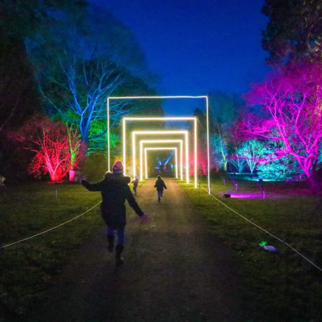 6 Best Christmas light trails near Bristol