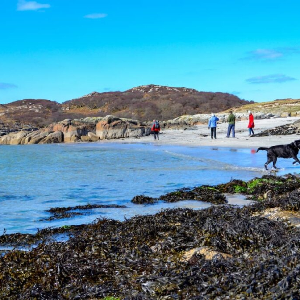 Things to do on Mull with kids